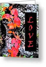 Love Fall Edition Greeting Card