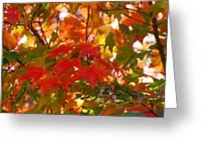 Love Fall Greeting Card