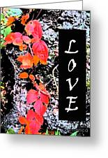 Love Fall White Edition Greeting Card