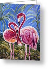 Love Flamingos  Greeting Card