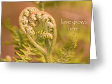 Love Grows Here Greeting Card