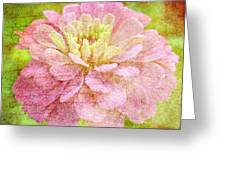 Love Letters Greeting Card