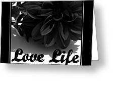 Love Life Black And White Greeting Card
