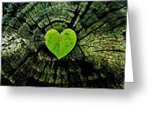 Love Nature  Greeting Card