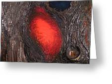 Love Of Nature Greeting Card by R Johnson