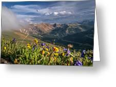 Loveland Pass Summer Greeting Card