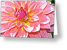 Lovely In Pink - Dahlia Greeting Card