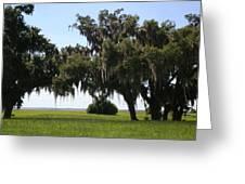 Lovely Landscape Greeting Card
