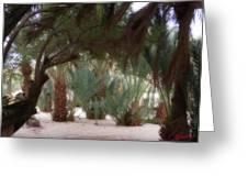 Lovely Oase Desert Camp Sinai Egypt Greeting Card