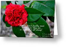 Lovers Don't-rumi Greeting Card