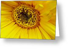 Loving Yellow Greeting Card