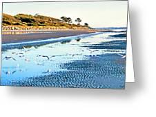 Low Tide At Jekyll Island Greeting Card