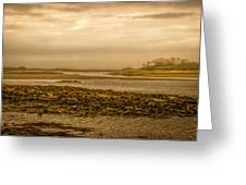 Low Tide Cape Porpoise Maine Greeting Card