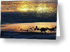 Low Tide Gold Greeting Card