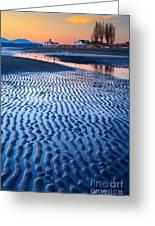 Low Tide In Seattle Greeting Card