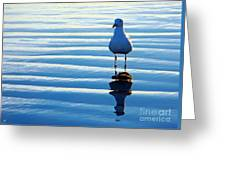 Low Tide Mirror Greeting Card