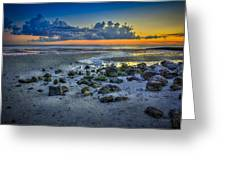Low Tide On The Bay Greeting Card
