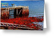 Low Tide - Red Seaweed - Fishing - Moratorium Greeting Card