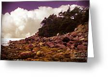 Low Tide Shoreline Closeup With Clouds Greeting Card