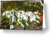 Lowcountry Snow Greeting Card