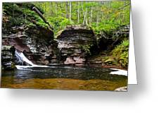 Lower Adams Falls Greeting Card