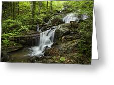Lower Amicalola Falls Greeting Card by Debra and Dave Vanderlaan