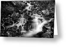 Lower Bridal Veil Falls 1 Bw Greeting Card