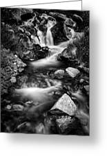 Lower Bridal Veil Falls 3 Bw Greeting Card