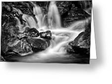 Lower Bridal Veil Falls 5 Bw Greeting Card