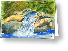 Lower Burch Creek Greeting Card