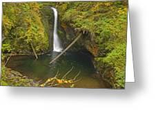 Lower Butte Creek Falls Greeting Card