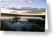 Lower Carter Pond At Dusk Greeting Card