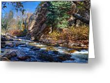 Lower Cottonwood 2014 II Greeting Card