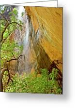 Lower Emerald Pool Waterfall Red Rock Greeting Card