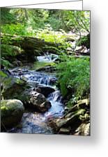 Lower Granite Falls 2 Greeting Card
