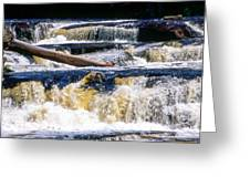Lower Tequamenon Falls Greeting Card
