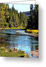 Lower Truckee River Greeting Card