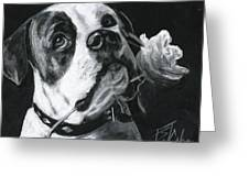 Loyal Love Greeting Card by Billie Colson