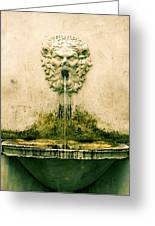 Lucca Fountain Greeting Card