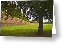 Lucca Walls Greeting Card