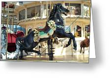 Lucky Black Pony - Syracuse Ptc No 18 Greeting Card