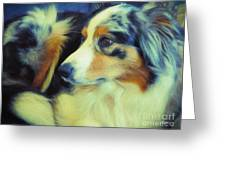 Lucky Dog's Life Greeting Card