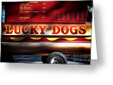 Lucky Dogs Lucky Dogs Greeting Card by John Rizzuto