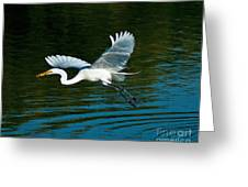 Lucky Egret Greeting Card