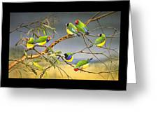 Lucky Seven - Gouldian Finches Greeting Card