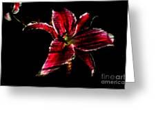 Luminet Darkness Greeting Card