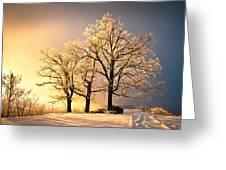 Luminous - Blue Ridge Winter Sunset Greeting Card