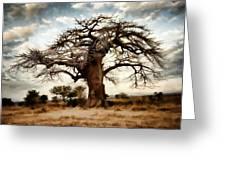 Luminous Sky And Tree Skeleton On The Prairie Greeting Card