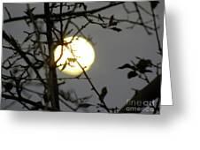 Lunar Still Life 2 Greeting Card