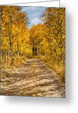 Lundy Canyon Pathway Greeting Card